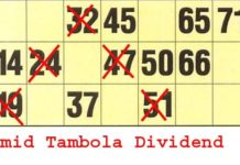 new tambola dividends