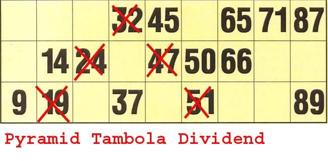 new tambola dividends